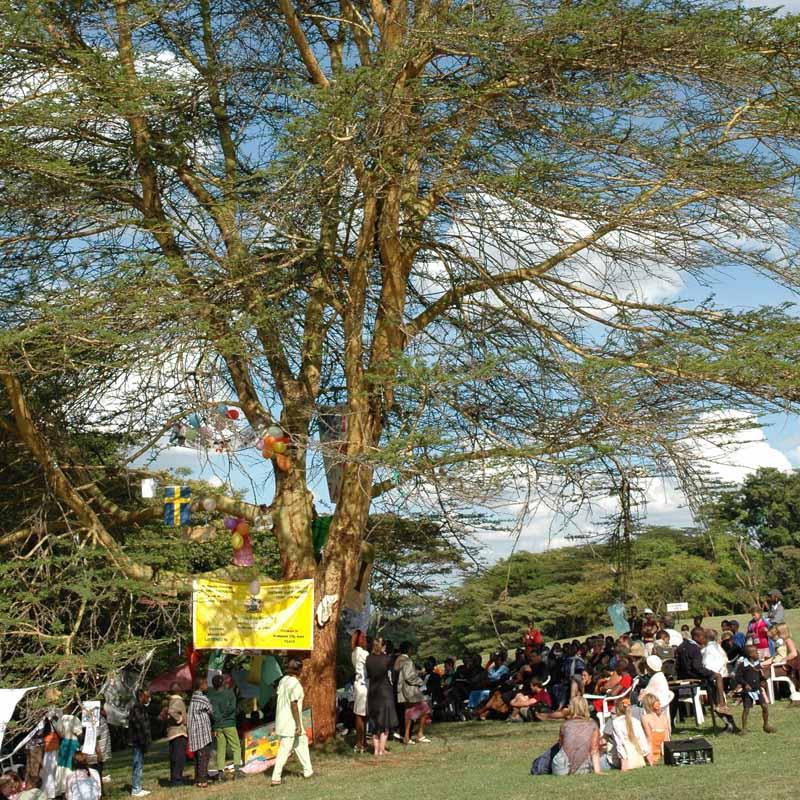 Barnens<br> Mötesplats<br> FN Kenya<br> 2001