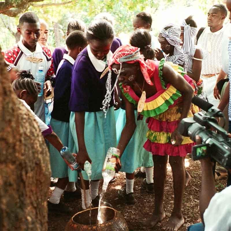 Afrika 2003-04 Museum Tree 532_14